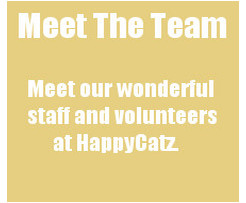 Click HERE to meet the team