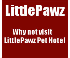 To visit Little Pawz website Click HERE